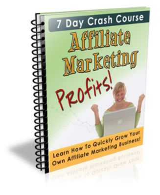 Product picture Affiliate Marketing Profits - How to make profit online.