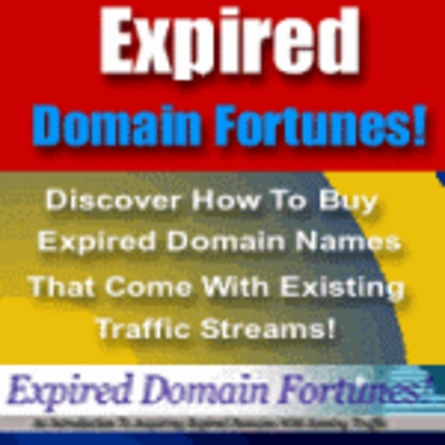Product picture Expired Domains Fortunes - How to build your online business